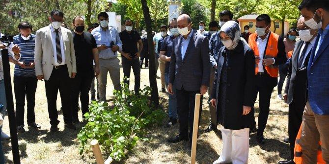 Konya'da, Kovid-19'dan ölen tıp öğrencisi Merve Mercan'ın anısına fidan dikildi