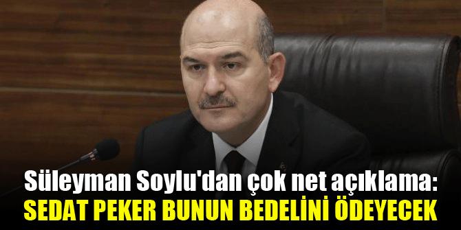 Süleyman Soylu'dan çok net açıklama: Operasyonun hedefi Türkiye