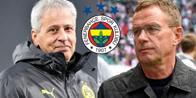 Fenerbahçe'de teknik direktör arayışları