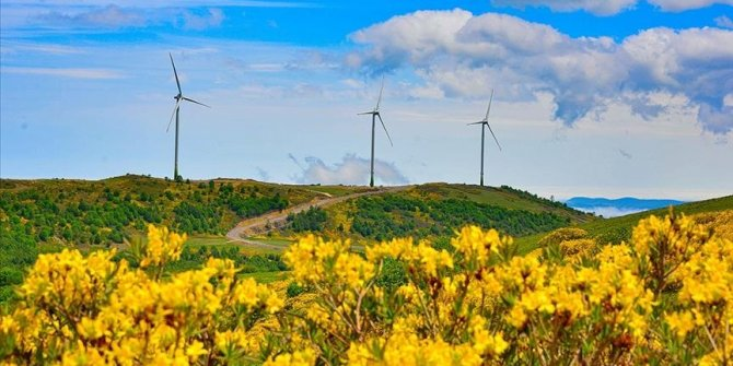 Turkey's energy map becomes greener as renewables expand countrywide