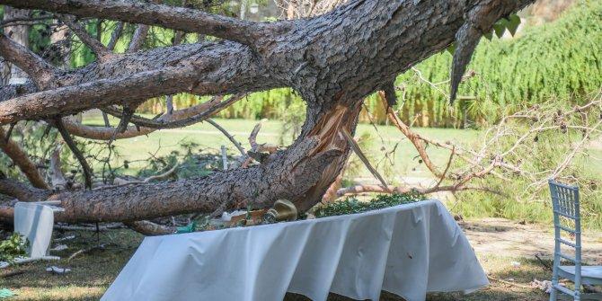 Kır düğününde 1 kişinin öldüğü restoranın işletmecisi: İhmal yok