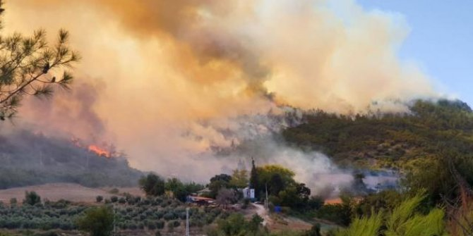 4 ilde orman yangını: Müdahale sürüyor