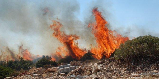 Didim'de makilik alanda çıkan yangın kontrol altına alındı