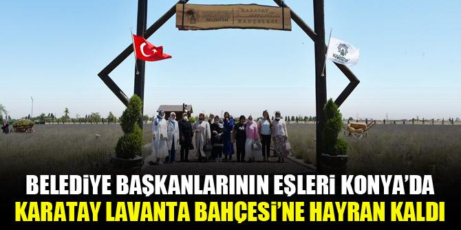Belediye başkanlarının eşleri Konya'da Karatay Lavanta Bahçesi'ne hayran kaldı