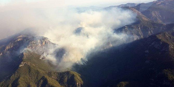 Köyceğiz'deki yangın 5 ayrı noktada devam ediyor