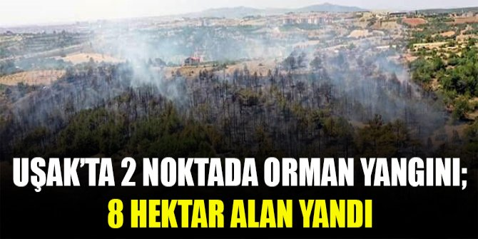 Uşak'ta 2 noktada orman yangını; 8 hektar alan yandı