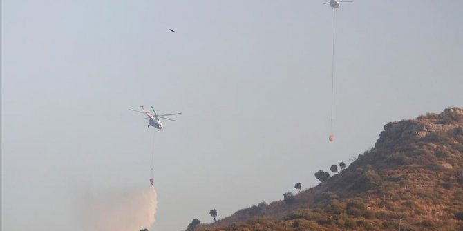 Turquie: 174 feux de forêts déclarés ces 8 derniers jours, 160 sont maitrisés
