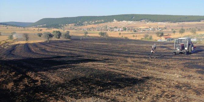 Tarladaki anız yangını, ormana ulaşmadan söndürüldü