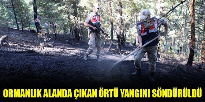 Ormanlık alanda çıkan örtü yangını söndürüldü