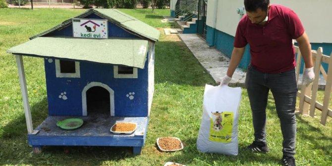 Sokak hayvanları  Ereğli'de unutulmuyor