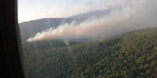 Çeşme'de orman yangını başladı