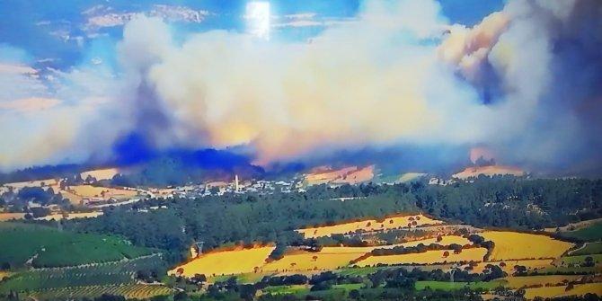 Orman yangını alevler gökyüzünü kapladı