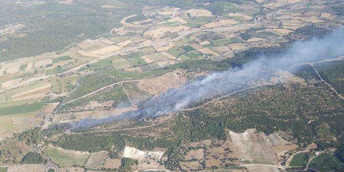 Ağaçlandırma sahasında çıkan yangın kontrol altında