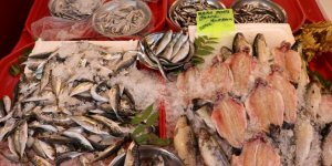 Balıkçı tezgahları şenlendi