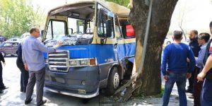 Kontrolden çıkan dolmuş ağaca çarptı: 6 yaralı