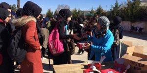 Şükrü Doruk Kız AİHL'de şivlilik etkinliği