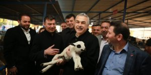 Mustafa Savaş'a dalama hayvan pazarında yoğun ilgi