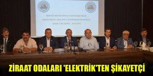 Ziraat Odaları 'elektrik'ten şikayetçi