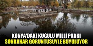 Konya'daki Kuğulu Milli Parkı sonbahar görüntüsüyle büyülüyor