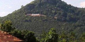 Orman Genel Müdürlüğü taşra teşkilatında düzenleme