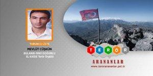 Terör örgütü El Kaide üyesi İstanbul'da yakalandı