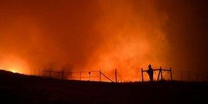 ABD'deki orman yangını büyüyor