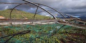 Çiftçiye 14 yılda 5,9 milyar lira hasar tazminatı ödendi