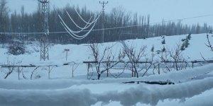 Seydişehir'de kar yağışı nedeniyle elektrik nakil hatları devrildi
