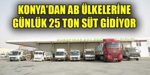 Konya'dan AB ülkelerine günlük 25 ton süt gidiyor