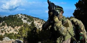 Turkey neutralizes 10 PKK terrorists in N.Syria
