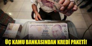 Üç kamu bankasından kredi paketi!