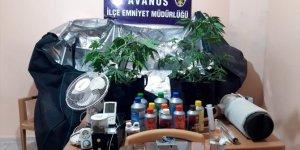 Avanos'ta uyuşturucu operasyonu