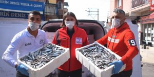 İzmir'de ihtiyaç sahiplerine 10 ton balık dağıtıldı
