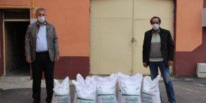Zara'da çiftçiye fasulye tohumu desteği
