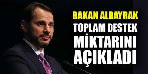 Bakan Albayrak toplam destek miktarını açıkladı