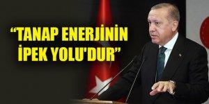 Erdoğan: TANAP enerjinin İpek Yolu'dur