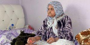 400 torun sahibi,126 yaşındaki nine rekoru eline aldı
