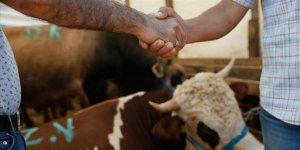 Hayvan satış yerlerine yönelik önlemler belirlendi
