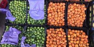 Rusya'ya yaş meyve sebze ihracatı yüzde 26 arttı