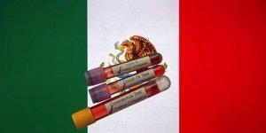 Meksika'da Kovid-19 nedeniyle son 24 saatte 667 kişi öldü
