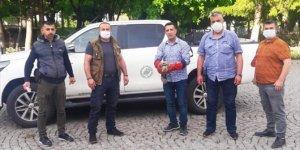 Konya'da yaralı bulunan şahin tedavi altına alındı