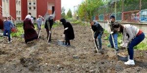 Öğretmenler okul bahçesinde kazma kürekle üretim için çalıştı