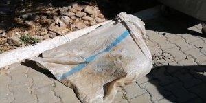 Muğla'da çuval içinde ayakları bağlı bulunan koyun tedaviye alındı
