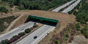 """İzmir-Çeşme Otoyolu üzerindeki """"ekolojik köprünün"""" yapımı tamamlandı"""