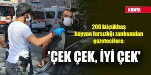 Konya'da 200 küçükbaş hayvan hırsızlığı zanlısından gazetecilere; 'Çek çek, iyi çek'