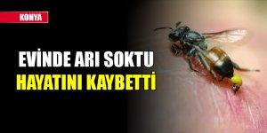 Konya'da evinde arının soktuğu kişi hayatını kaybetti
