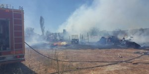 Burdur'da çıkan yangında 2 küçükbaş hayvan telef oldu