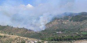 Zeytinlik alanda çıkan yangın ormana sıçradı; Söndürme çalışmaları devam ediyor