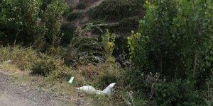 Dereye düşen traktörün sürücüsü öldü