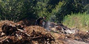 Yakılarak ormanlık alana dökülen fındık atıkları faciaya yol açıyordu